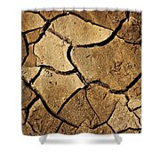 Dry Land Shower Curtain by Carlos Caetano