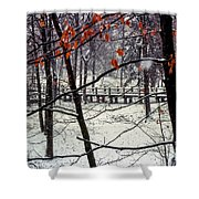 Early Snow Shower Curtain by Bob Phillips