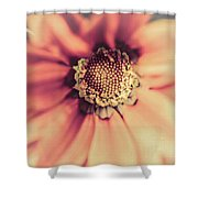 Flower Beauty II Shower Curtain by Marco Oliveira