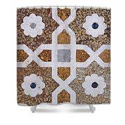 Geometric Designs On The Baby Taj Agra Shower Curtain by Robert Preston