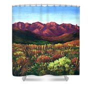 Gods Palette Shower Curtain by Anthony Falbo