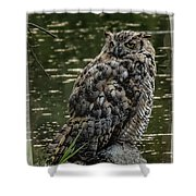 Great Horned Owl Shower Curtain by Ernie Echols