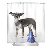 Happy Birthday Shower Curtain by Edward Fielding