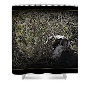 I See You Shower Curtain by Ernie Echols