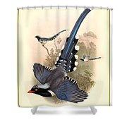 John Gould Birds Shower Curtain by Gary Grayson