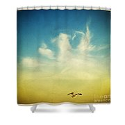 Lonely Seagull Shower Curtain by Setsiri Silapasuwanchai