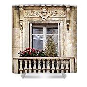 Old Window Shower Curtain by Elena Elisseeva