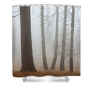Out of the Fog Shower Curtain by Mike  Dawson