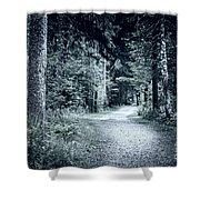 Path In Dark Forest Shower Curtain by Elena Elisseeva