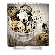 Quail Eggs Shower Curtain by Elena Elisseeva