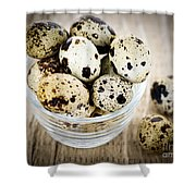 Quail Eggs Shower Curtain by Elena Elisseeva