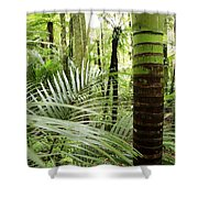 Rainforest  Shower Curtain by Les Cunliffe