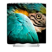 SLEEPING BEAUTY Shower Curtain by KAREN WILES
