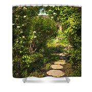 Summer Garden And Path Shower Curtain by Elena Elisseeva