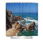 Ursa Beach Shower Curtain by Carlos Caetano