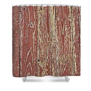 Weathered And Worn Shower Curtain by Georgia Fowler