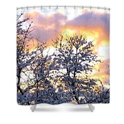 Wintry Sunset Shower Curtain by Will Borden