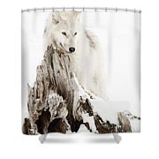 Arctic Wolf Pup Shower Curtain by Wolves Only