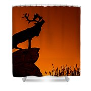 130918p141 Shower Curtain by Arterra Picture Library