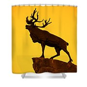 130918p143 Shower Curtain by Arterra Picture Library