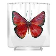 16 Mesene Rubella Butterfly Shower Curtain by Amy Kirkpatrick