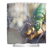 Green Grasshopper Ephippiger Shower Curtain by Jivko Nakev