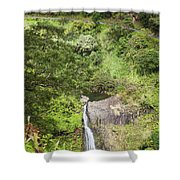 Hana Waterfall Shower Curtain by Jenna Szerlag