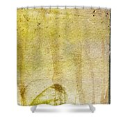Music Of My Life Shower Curtain by Brett Pfister
