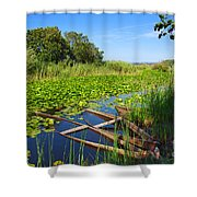 Pateira Boats Shower Curtain by Carlos Caetano