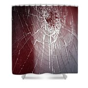 Shattered Dreams Shower Curtain by Trish Mistric