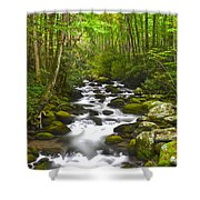 Smoky Mountain Stream Shower Curtain by Frozen in Time Fine Art Photography