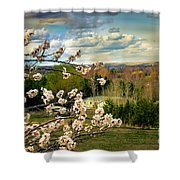 Spring Time Shower Curtain by Robert Bales
