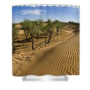 Desert Tamarix Trees Shower Curtain by Dan Yeger