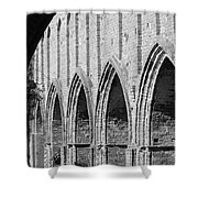 Monastery Ruins Shower Curtain by Four Hands Art