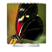 Red Heliconius Dora Butterfly Shower Curtain by Elena Elisseeva