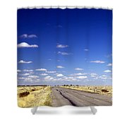 Road Ahead Shower Curtain by Tim Hester