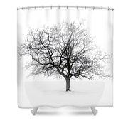 Winter Tree In Fog Shower Curtain by Elena Elisseeva