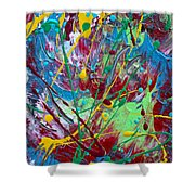 4th Of July Shower Curtain by Donna Blackhall
