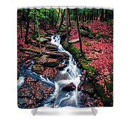 Chesterfield Gorge New Hampshire Shower Curtain by Edward Fielding