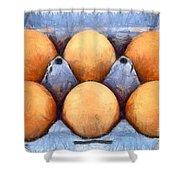 Organic Eggs Shower Curtain by George Atsametakis