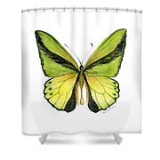 8 Goliath Birdwing Butterfly Shower Curtain by Amy Kirkpatrick
