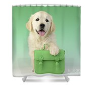 9 - 5 Retriever Dp914sq Shower Curtain by Greg Cuddiford