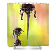 Wilted Flower  Shower Curtain by Toppart Sweden
