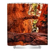 A Bridge Shower Curtain by Robert Bales