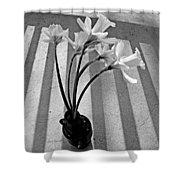 A Brief Moment Shower Curtain by Chris Berry