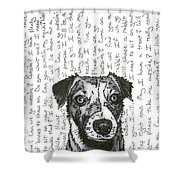 A Conversation With A Jack Russell Terrier Shower Curtain by Salvadore Delvisco