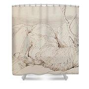 A Dead Stag Shower Curtain by Sir Edwin Landseer