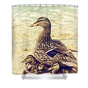 A Family Affair Shower Curtain by Karol Livote