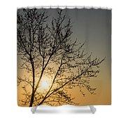 A Filigree Of Branches Framing The Sunrise Shower Curtain by Georgia Mizuleva