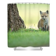 A Lone Kit Shower Curtain by Everet Regal